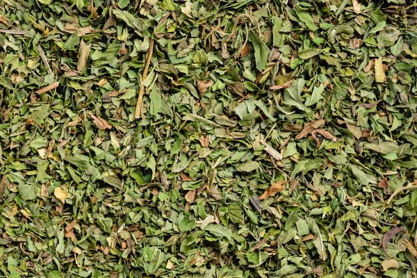 Propermint Tea Blend by Twist Teas